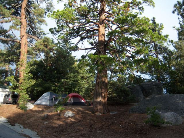 Our campsite in Idyllwild