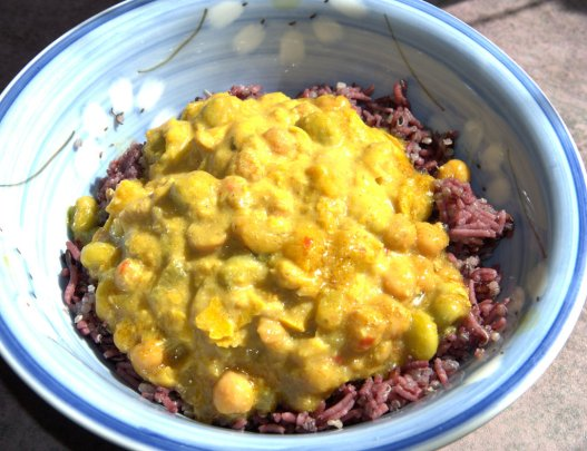 Curry on top of purple rice